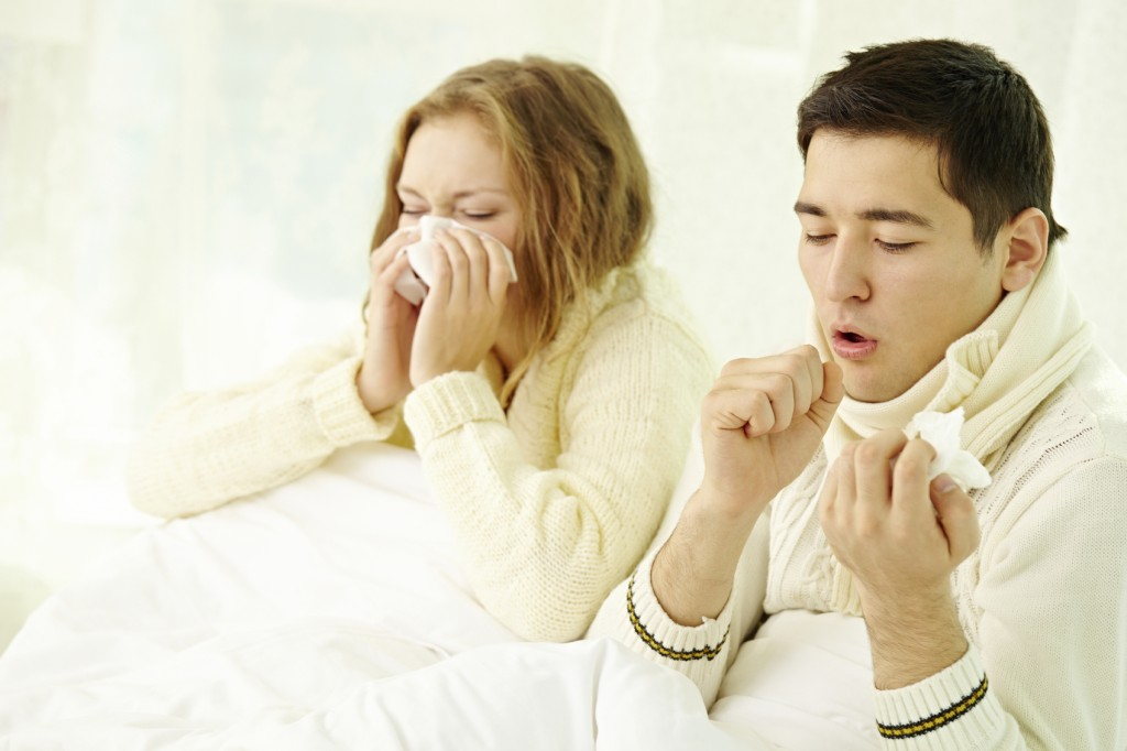 Flu Facts and Fictions!