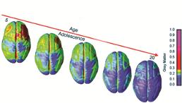age vs adolescence graphic